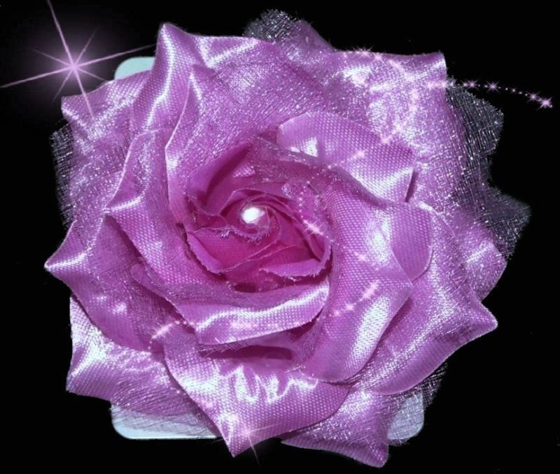 Bridal Flower/Rose Hair Fascinator/Corsage/Brooch/Clip